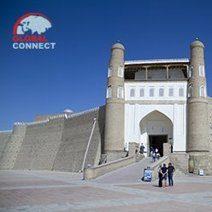 citadel_ark.jpg